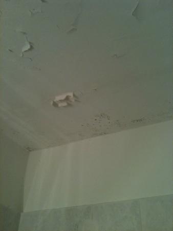 Albergo Venezia : Plafond moisi qui s'éffrite sur vous/ Chambre n° 11 du 2ème étage...Pitoyable et honteux  !!