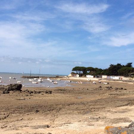 Angoulins, France : Le Port du Loiron