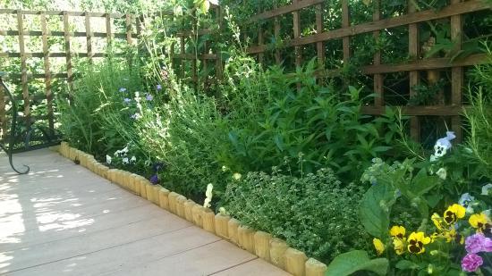 Benson, UK: Lovely wee garden