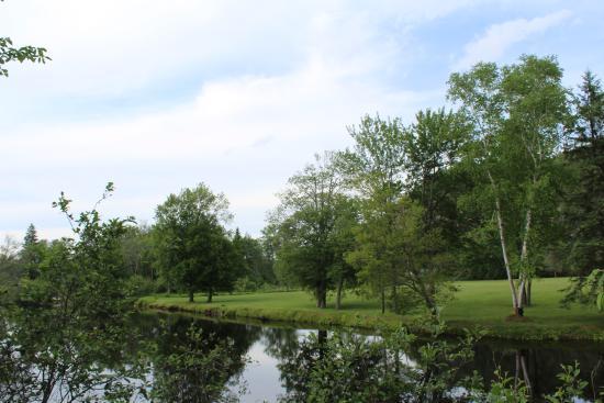 Millennium Park: Il fiume