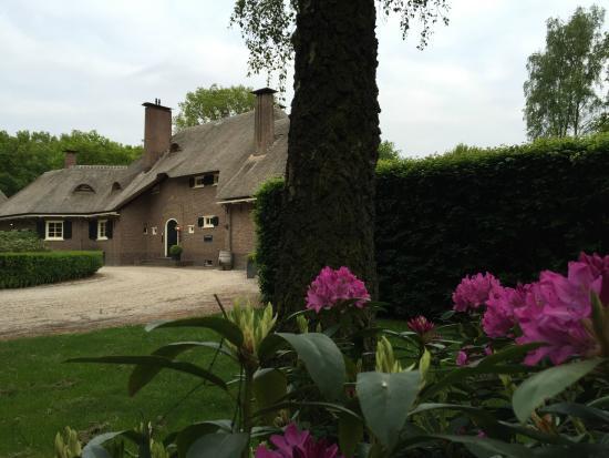Galerie In Huis : Galerie wildevuur rododendron voorkant huis picture of galerie