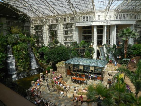 Cascades Section Picture Of Gaylord Opryland Resort Convention Center Nashville Tripadvisor