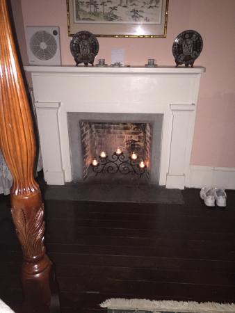 Fireplace in the Camillia room.