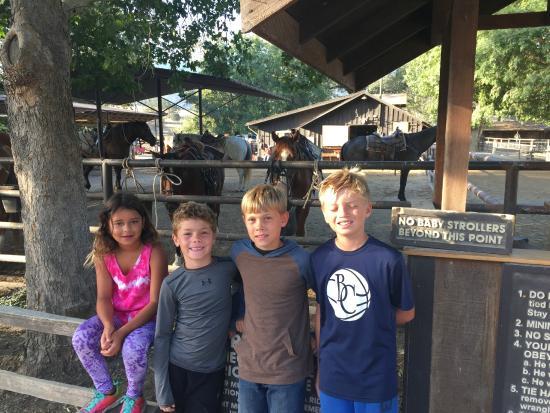 阿麗莎爾牧場渡假旅館照片