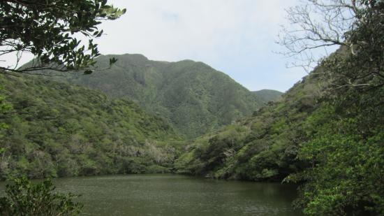 Mikurajima-mura, Japan: 池です