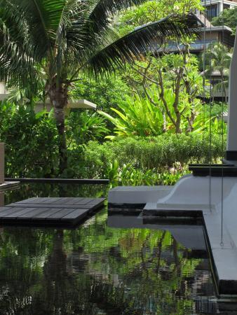 Anantara Layan PhuketResort : poolside