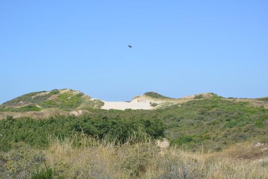 Ambleteuse, France: dunes
