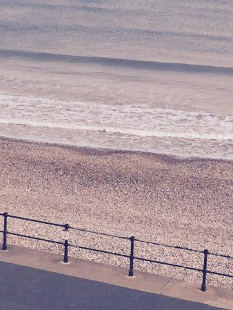 The Bedford Hotel: Views from our bedroom window and our collie enjoying the dog friendly section of the beach