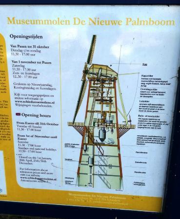 gratis site Schiedam