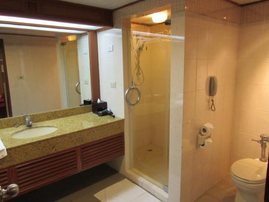 Ruime badkamer met niet zo nette douche - Picture of Holiday Inn ...