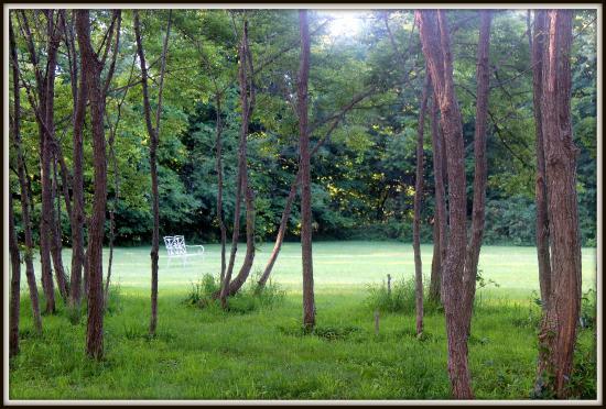 Palenville, État de New York : grounds
