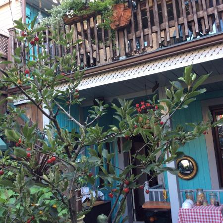 La Loggia Art & Breakfast : The garden overlooking my bedroom