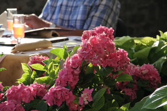 Monte Santa Maria Tiberina, Ιταλία: A simple floral display