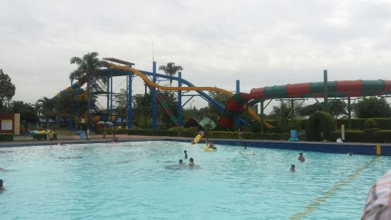 Toboganes y piscina de olas