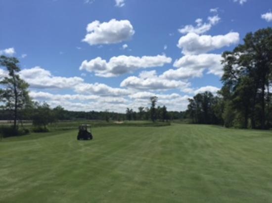 Legacy at Cragun's: View from one of the fairways.  Beautiful course!