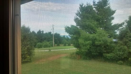 Jonas Ridge, NC: View from the sitting area. Better view out of one window. Best view outside.