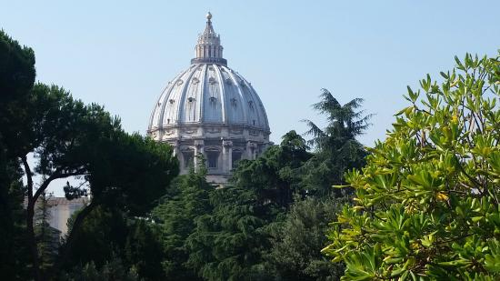 Rome with a Roman: St Peters