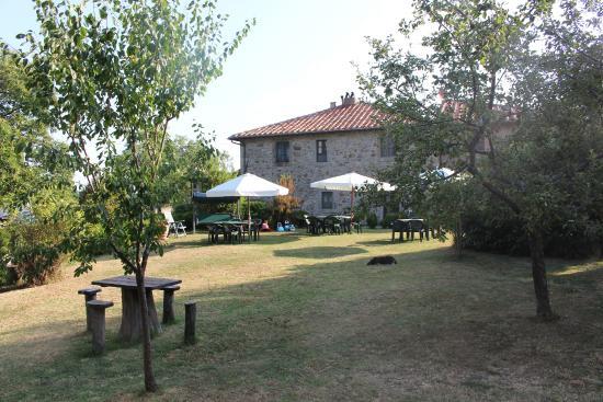 Agriturismo Antico Casale Pozzuolo: Il parco