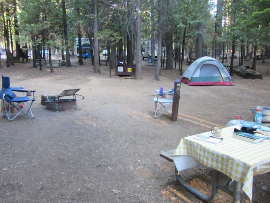 Hodgdon Meadow Campground: Walk-in campsite