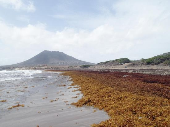 Sint-Eustatius: View south on Zeelandia Bay, June 2015