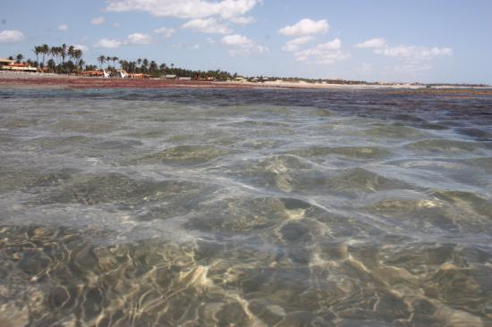 Trairi, CE: Piscinas naturais de Guajiru (maré baixa)