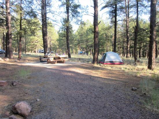 Kaibab Lake Campground : Campsite