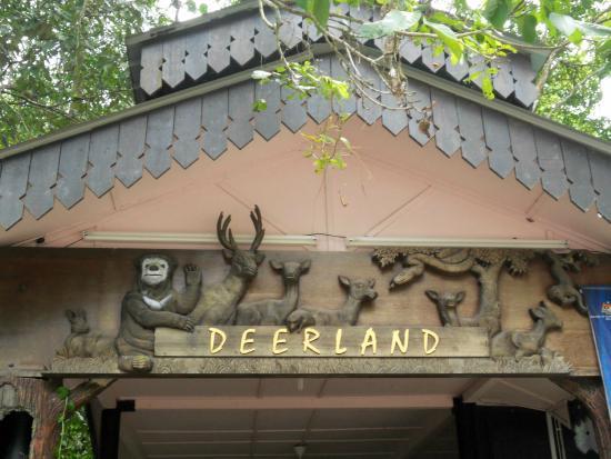 Deerland Park
