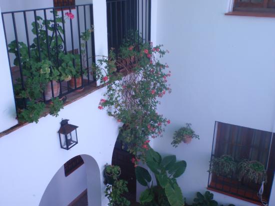 Casa de Las Piedras: The plant filled central patio