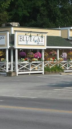Castleton, VT: Blue Cat Bistro