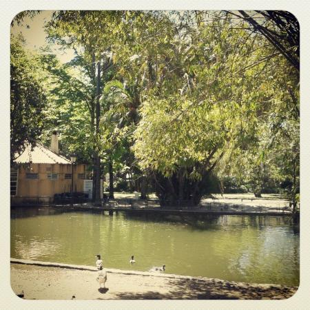 Jardim Da Estrela: The lake in the centre of the garden