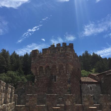 Napa Experience Tour W Castello Di Amorosa