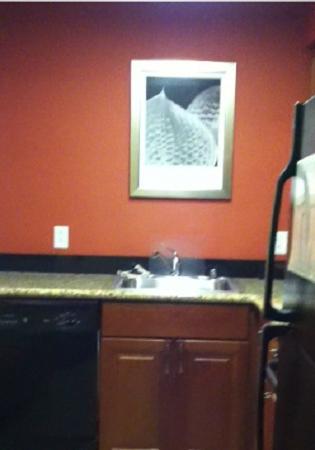 Residence Inn Madison West/Middleton: The kitchen sink