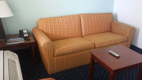 Coastal Palms Inn & Suites : Living area and sofa bed.