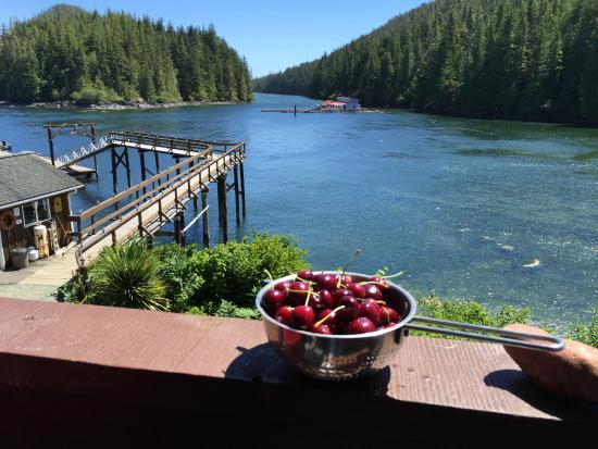 Duval Point Lodge : Life is just a bowl full of...