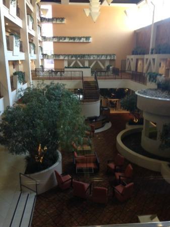 Hilton Stockton: Atrium