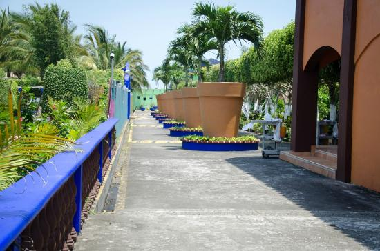 Hotel Mision del Mar: Hotel Grounds