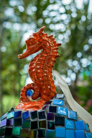 Nightland Cabins at JadeSeahorse: May the Seahorse be with you