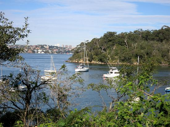 Taronga Zoo to Manly Beach Walk