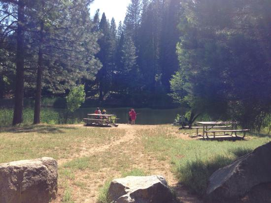 White Pines Lake : Picnic area by the water