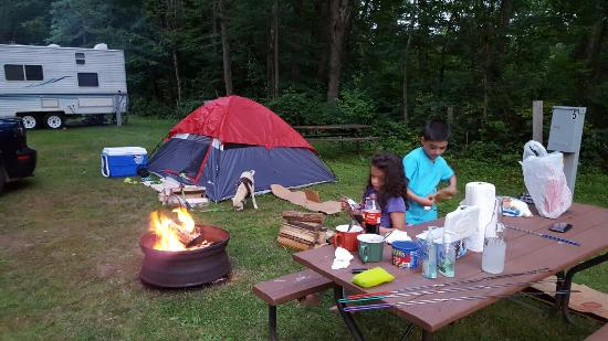 Westhampton, MA: Single mother camping with children and dogs. No one's perfect. I'd go again