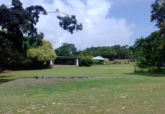 Accueil picture of le jardin d 39 eau de blonzac goyave - Jardin botanique guadeloupe basse terre ...