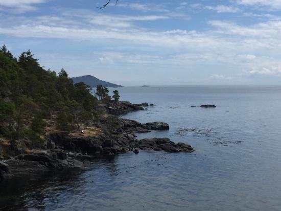 Rainforest Tours : Aylard hike