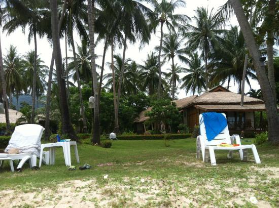 Lipa Lodge Beach Resort: Территория отеля перед мореи
