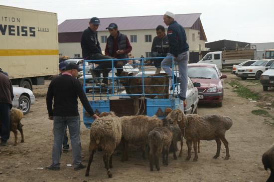 Karakol, Δημοκρατία της Κιργιζίας: Мал-базар