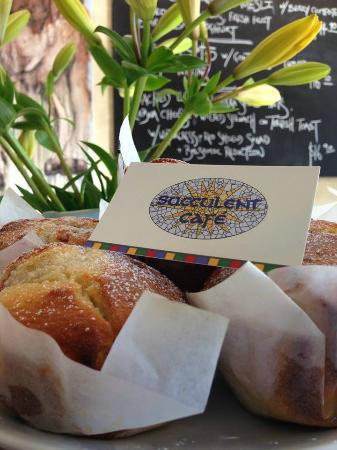 Succulent Cafe: Mixed berries/coconut/ macadamia muffin