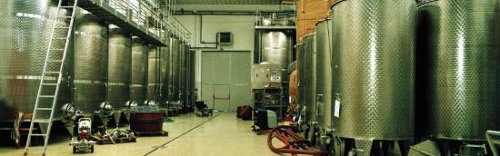 Cantine Gava: L'area di Stoccaggio dei nostri vini