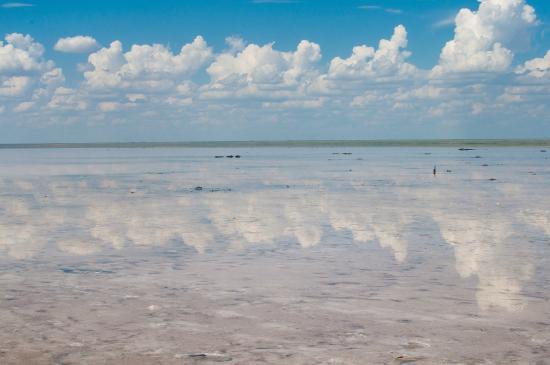 Volgograd Oblast, Ρωσία: Озеро покрыто тонким слоем воды, и засчет солевого слоя в нем зеркально отражается небо.