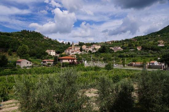 B&B Chez Vivi' : Blick auf Arqua Petrarca