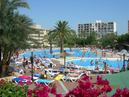 Piscine de l hotel picture of club cala romani calas de for Club de piscine