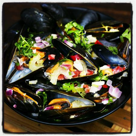 Tapas Barinn: Icelandic mussels in champagne with coriander and chili